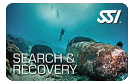 SSI Search and Recovery